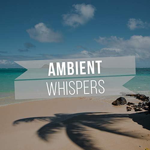 Lullaby Ambiance & Deep Sleep Hypnosis Masters