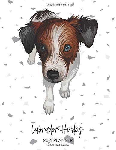 Labrador Husky 2021 Planner: Dated Weekly Diary With To Do Notes &...