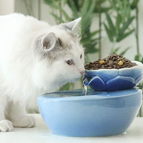 CPATOG Trinkbrunnen für Hunde Keramik-Trinkbrunnen für Haustiere Trinkbrunnen für Haustiere Katzen-Trinkbrunnen Frisches, sauberes Wasser für das Ansaugrohr und den Motorraum, Trinkbrunnen für Katzen