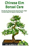 Chinese Elm Bonsai Care: The...