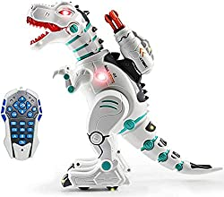 5. wodtoizi Remote Control T-Rex Robot Dinosaur Toy