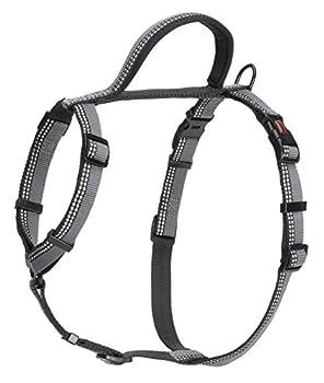 Halti Premium Walking Harnais avec Bande Réfléchissante/Poignée Souple Doublée de Néoprène pour Chien Noir Taille S
