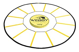 Webby Agility Trainer – Circle Speed and Agility Ladder for High Intensity Footwork Drills and Skills – A Circular Piece of Training Equipment That Changes The Way You Move from Dayline Innovations Inc