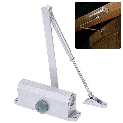 Cierrapuertas - Aluminio hidráulico Buffer cierre automático con brazo telescópico ajustable que se puede instalar en la puerta de 60-80kg Familia Hotel Apartamento ( Color : Positioning funct