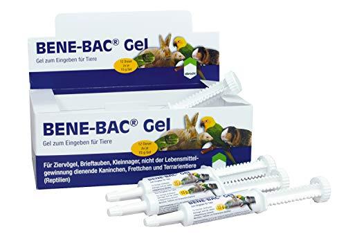 Albrecht Bene Bac Gel 15 g Dosierspritze