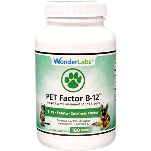 Top 10 best selling list for vitamin supplements for dogs in pancreatic insufficiency