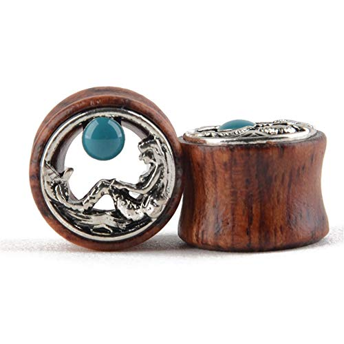 QinWenYan oordopjes, tunnel, steen, houten oordopjes, holle oordopjes, tunnel, gauge, boren geperforeerd, geschikt voor decoratie van vrouwen