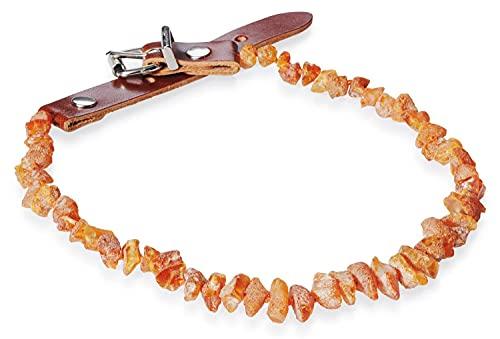 PETGARD Bernsteinhalsband Bernsteinkette mit Lederverschluss für Hunde + Katzen 46-50 cm