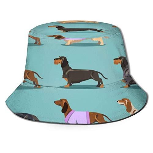 ZharkLI Sombrero de fondo con I Love Dachshunds Sun Fisherman Cap Sombrero al aire libre UV protección solar sombrero plegable ligero transpirable gorra de viaje negro