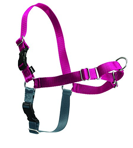 PetSafe Easy Walk Harness,  Medium, RASPBERRY/GREY for Dogs