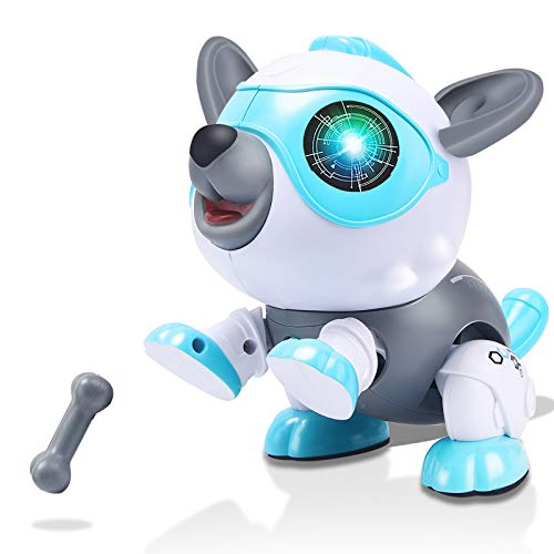 Chalpr Toys for 3-12 Year Old Boys or Girls, STEM DIY Robot Dog, Electronics Robot Puppy Robo Pets with RGB Light Flashing Eye , Educational Interactive Gift for Kids (White)