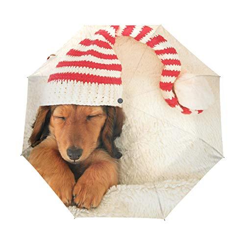 DUILLY Automatischer Regenschirm zum Öffnen/Schließen,Schlafender Netter Welpe, der Weihnachtselfen-Hut trägt,Winddichter, wasserdichter, Leichter, kompakter, zusammenklappbarer Kleiner Sonnenschirm