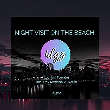 Night Visit on the Beach