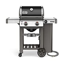 Weber 65010001 Genesis II E-210 Natural Gas Grill, Two-Burner
