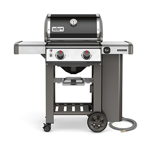 Weber 65010001 Genesis II E-210 Natural Gas Grill, Black, Two-Burner