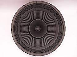 Electronicspices 100W MAX Power Audio Speaker (12-Inch),Electronic Spices