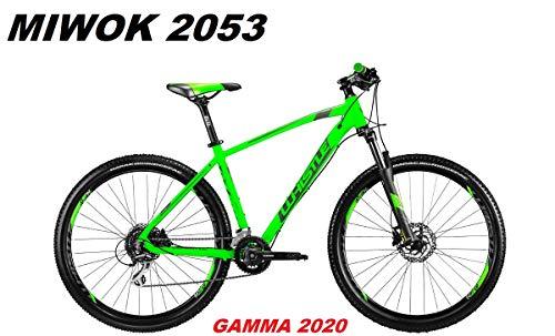 WHISTLE Bici MIWOK 2053 Ruota 27,5 Shimano ACERA 16V SUNTOUR XCM RL Gamma 2020 (46 CM - M)