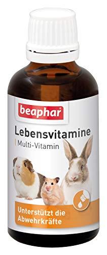 Vitaminas para roedores, Gotas de vitaminas para Animales pequeños, con vitaminas B, Vitamina C, E y K, Especialmente Bueno para cobayas | 50 ml