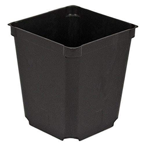 Top 10 seed starter pots 4 inch square for 2021