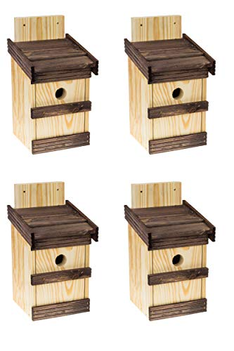 4 x Nistkasten Natur für Blaumeisen & kleine Meisenarten, solide gemacht aus Holz Vogelhaus für Meisen, Nisthilfe mit 32 mm Einflugloch Vogelhaus...