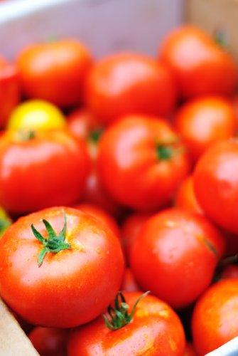 Seedeo® Tomate Matina (Lycopersicum L.) 25 Samen BIO