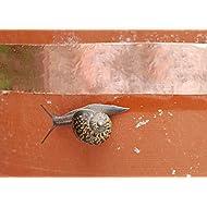 5mm 10mm 20mm x 25m Copper Slug Tape: Adhesive Copper Slug Snail Barrier Tape (5mm (W) x 25m (L))