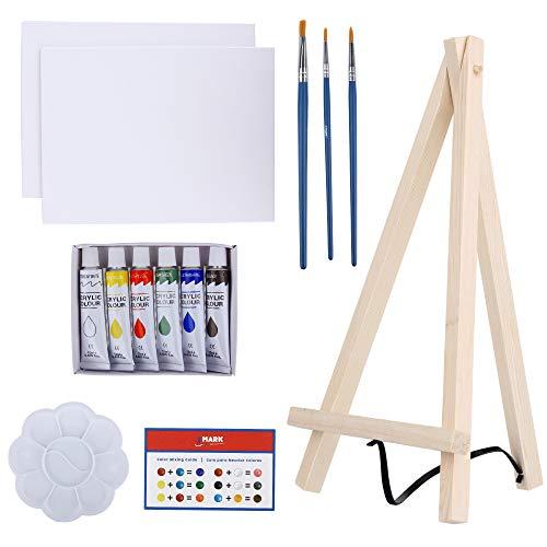 Art Canvas Paint Set Supplies