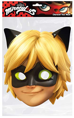 Thorness Cat Noir Miracluous Official Face Mask