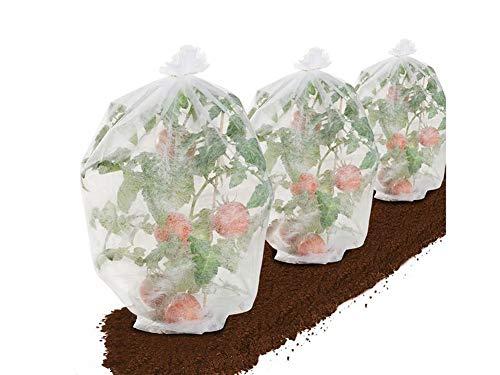 Florabest® Vlies - schützt vor Vögel, Frost und Regen - Weiß Tomatenvlies