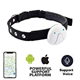 Best Gps Cat Collars - Alliner Pet Tracker GPS Tracking Collar for Dogs Review