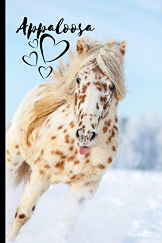 Appaloosa Horse Notebook For Horse Lovers: Composition Notebook 6x9' Blank Lined Journal