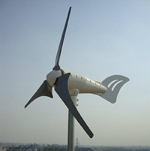 Gowe netzferne 1KW Wind Turbine Generator + 1000W Laderegler