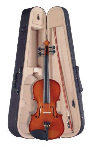 Palatino VN-350 Campus Violin Outfit, 4/4 Size