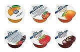Menz & Gasser - Mermeladas Individuales Surtidas de 6 Sabores, 100 Piezas de 25 gr. Cada. Producto Tradicional Italiano