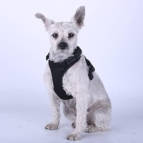 Arnés para perros Pet Dog Harness Summer Mesh Nylon Breathable Dog Vest Soft Adjustable Harness for Dogs Puppy Collar Cat Pet Dog Chest Strap Arnés para gatos (Color : Black, Size : Large)