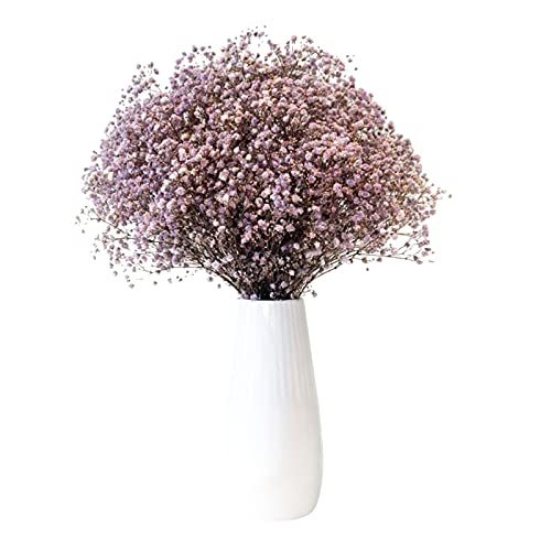70cm Flores secas de Gypsophila natural Flores de aliento de bebé Ramos para decoración del hogar Accesorios para fotos Decoración de boda Sin jarrón Flores secas de Gypsophila para decoración