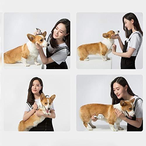 Gebogene Nadel Kamm for Hund und Katze Haarentfernung Kamm Beauty Professionelle Flohkamm (weiß) Huangchuxin (Color : Pink)