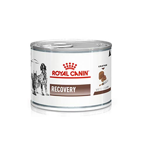 ROYAL CANIN Recovery Hund und Katze (12 x 195 g)