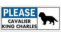PLEASE CAVALIER KING CHARLES ワイドマグネットサイン:キャバリアキングチャールズ Lサイズ