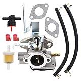 Carbhub 640290 Carburetor for Tecumseh AV520 TV085XA Engine Replaces Tecumseh 640290 640263 631720A