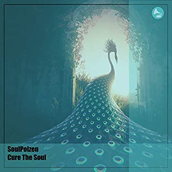 Cure The Soul