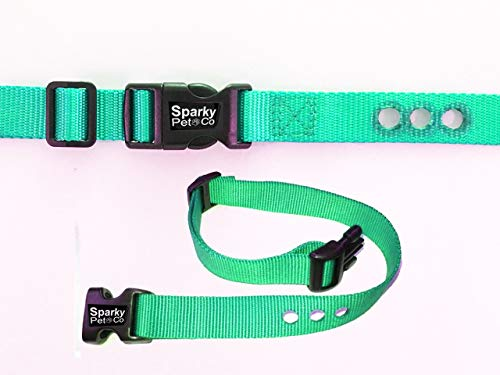 """Sparky Pet Co Universal Nylon 1"""" 3-Consecutive Hole Dog Strap for Remote Trainers (Teal) PIF 275-19"""