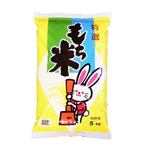 【玄米】山形県産 玄米 もち米 ヒメノモチ 5kg(長期保存包装)x1袋 令和2年産