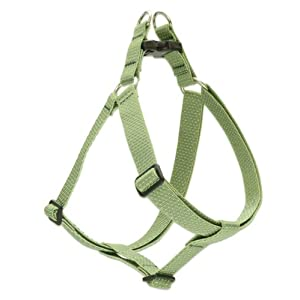 LupinePet Eco 1″ Moss 19-28″ Step In Harness for Medium Dogs