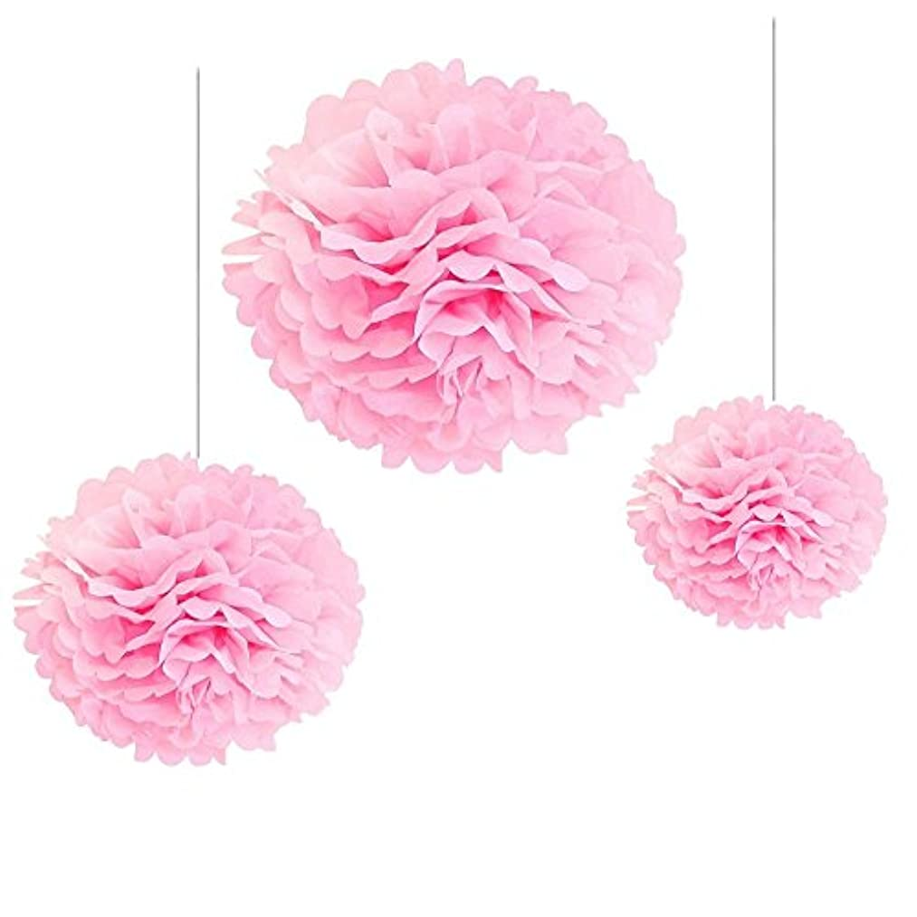 Joinwin? 12PCS Mixed Sizes Pink Tissue Paper Flower Pom Poms Pompoms Wedding Birthday Party Nursery Decoration