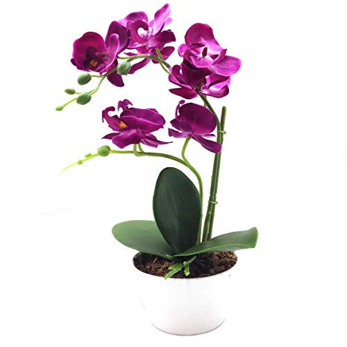 PEPPERLONELY Brand 13' H Artificial Ceramic Potted Plant Orchid, Purple
