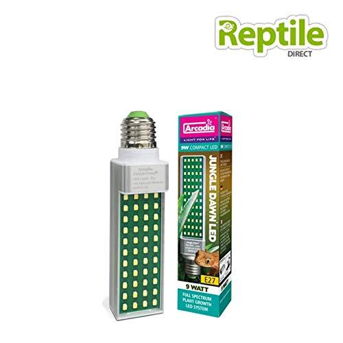 Preisvergleich Produktbild Ardacia AJD09 Jungle Dawn Lampe,  9 watt