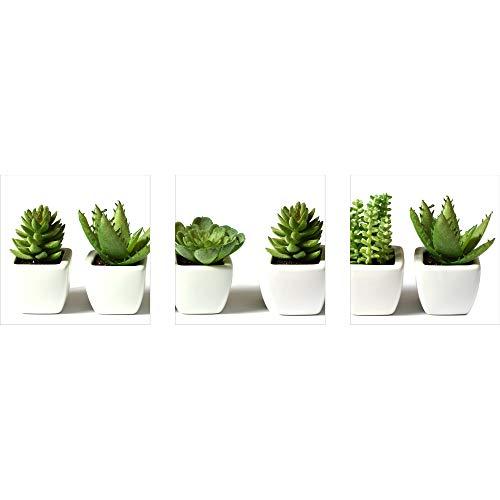 decorwelt | Dreiteiliges Wandbild 3 Teilig Acrylglasbilder Acryl Glasbild Pflanzen Grün 90x30 cm Wandbilder Wohnzimmer Esszimmer Deko Wanddeko