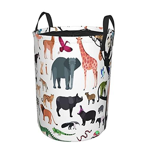 Cesto portaoggetti,collezione di animali esotici e uccelli che vivono nella savana e nella foresta tropicale o nella giungla isolata,grande cesto portabiancheria pieghevole 21.6'x16.5'