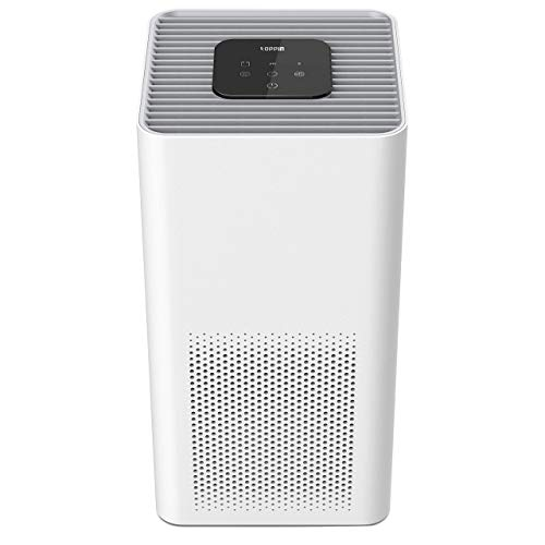 TOPPIN H13 True HEPA Air Purifiers for Home Large Room Up to 215ft²- 21dB Ultra-Silent Air Cleaner with Brushless Motor for 99.97% Allergies, Pets Hair, Dander, Pollen, Dust